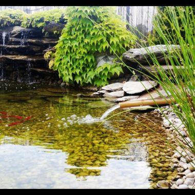woda-w-ogrodzie--1