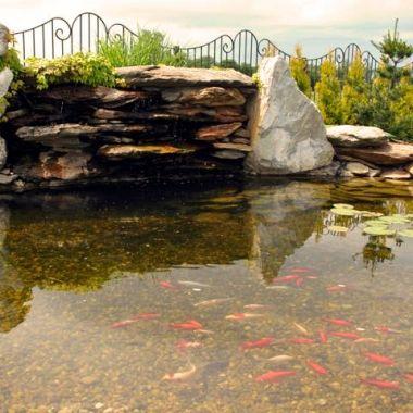 woda-w-ogrodzie--14