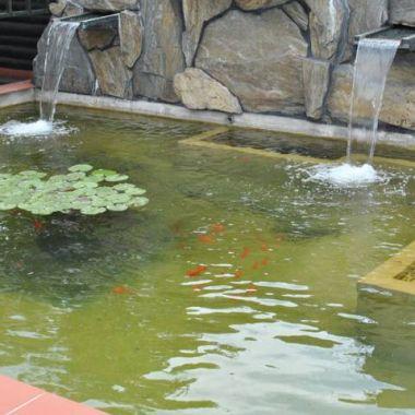 woda-w-ogrodzie--8