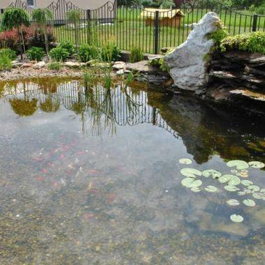 woda-w-ogrodzie--9