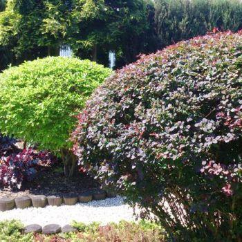 ogrody-przydomowe--10