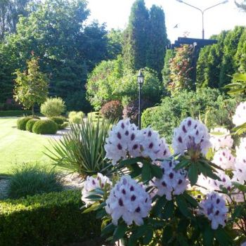 ogrody-przydomowe--14