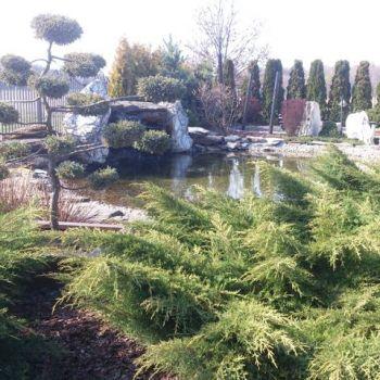 ogrody-przydomowe--4