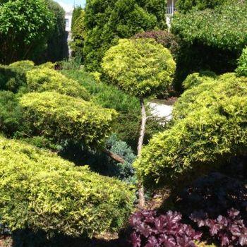 ogrody-przydomowe--8