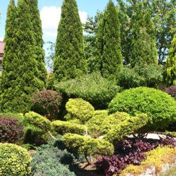 ogrody-przydomowe--9