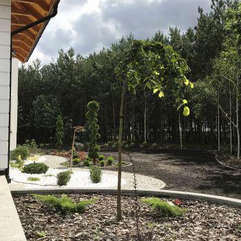 ogrody_przydomowe_rok_2020__16